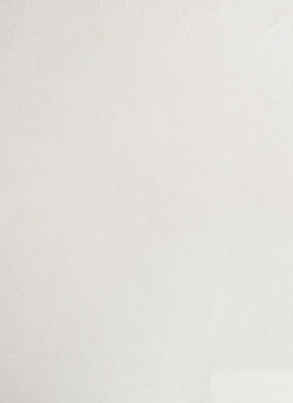 franklin61582.x800.jpg