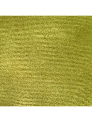 Belvedere-20 Meadow-RAM