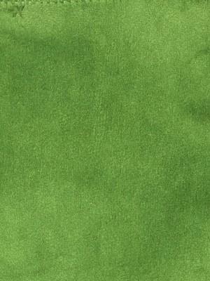 franklin205600x800.jpg