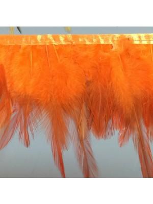IR6984RNG-Orange-EXP