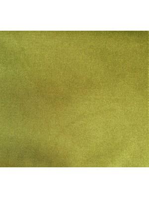 Belvedere-10 Aloe-RAM